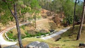Book Best Accommodation Hotels in Ranikhet Uttarakhand Hotels Resorts Deals Price Online with Earth Trip. BOOK Ranikhet hotels and Resorts online with lowest rates & discounts. List of hotels and resorts in Ranikhet with best deals, offers. Ranikhet Cheap budget hotels, luxury deluxe hotels