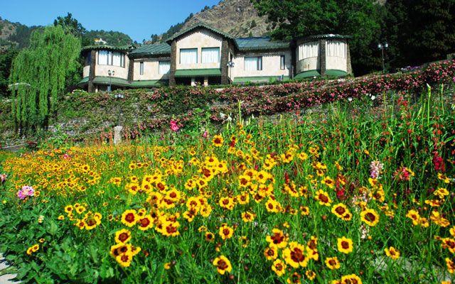 Shervani Hilltop Nainital