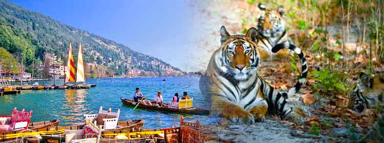 Nainital Corbett Tour Package
