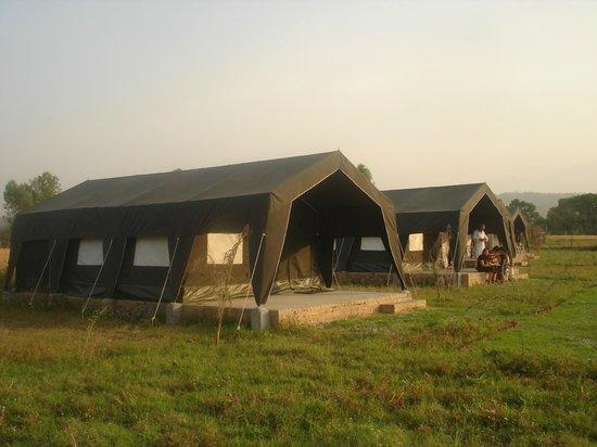 Camp Broadleaf