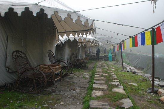 Ghangaria Camp Resort