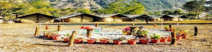 Camp Wild River