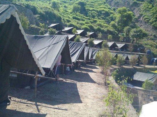 Mogli Camps
