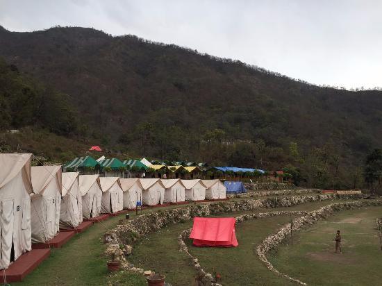 Vatika Luxury Jungle Camp